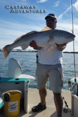 Bull Redfish in Cocoa beach Florida