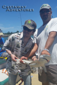 Port Canaveral Shark fishing, Cast Away adventures