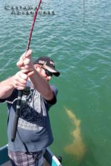 Shark fishing in Cocoa Beach Florida