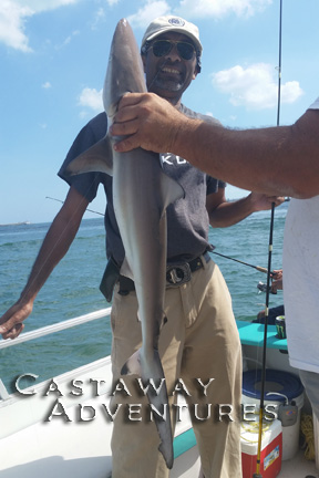 Shark fishing in Cocoa Beach Florida, Cast Away Adventures