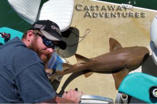 Shark fishing Cocoa Beach