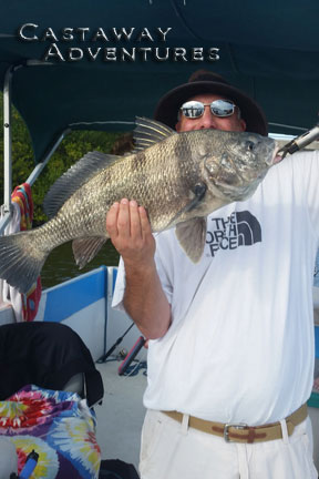 Black drum fishing in Cocoa beach